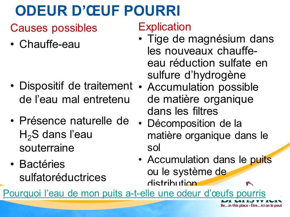 ODEUR DŒUF POURRI Causes possibles Chauffe-eau Dispositif de traitement de leau mal entretenu Présence naturelle de H 2 S dans leau souterraine Bactér