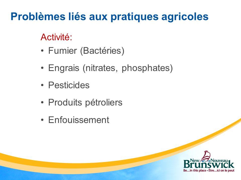 Problèmes liés aux pratiques agricoles Activité: Fumier (Bactéries) Engrais (nitrates, phosphates) Pesticides Produits pétroliers Enfouissement