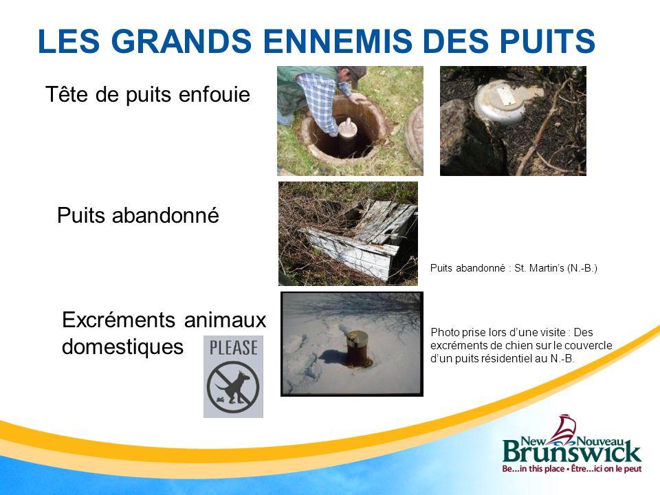LES GRANDS ENNEMIS DES PUITS Tête de puits enfouie Puits abandonné Excréments animaux domestiques Puits abandonné : St.