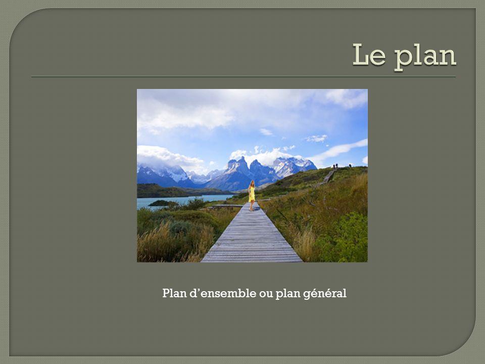 Plan large