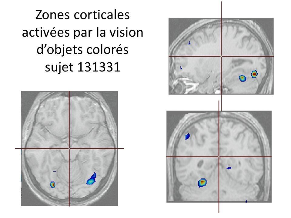 Zones corticales activées par la vision dobjets colorés sujet 131331