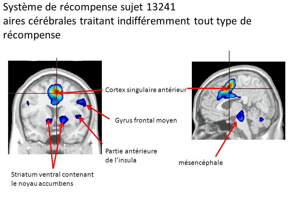 Système de récompense sujet 13241 aires cérébrales traitant indifféremment tout type de récompense Cortex singulaire antérieur Striatum ventral conten
