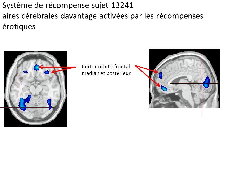Système de récompense sujet 13241 aires cérébrales davantage activées par les récompenses érotiques Cortex orbito-frontal médian et postérieur