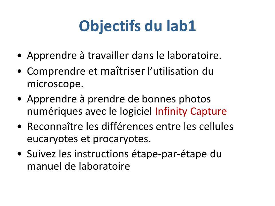 Objectifs du lab1 Apprendre à travailler dans le laboratoire.