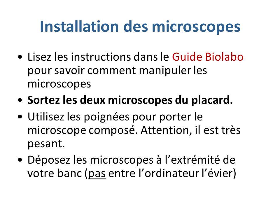 Installation des microscopes Lisez les instructions dans le Guide Biolabo pour savoir comment manipuler les microscopes Sortez les deux microscopes du placard.