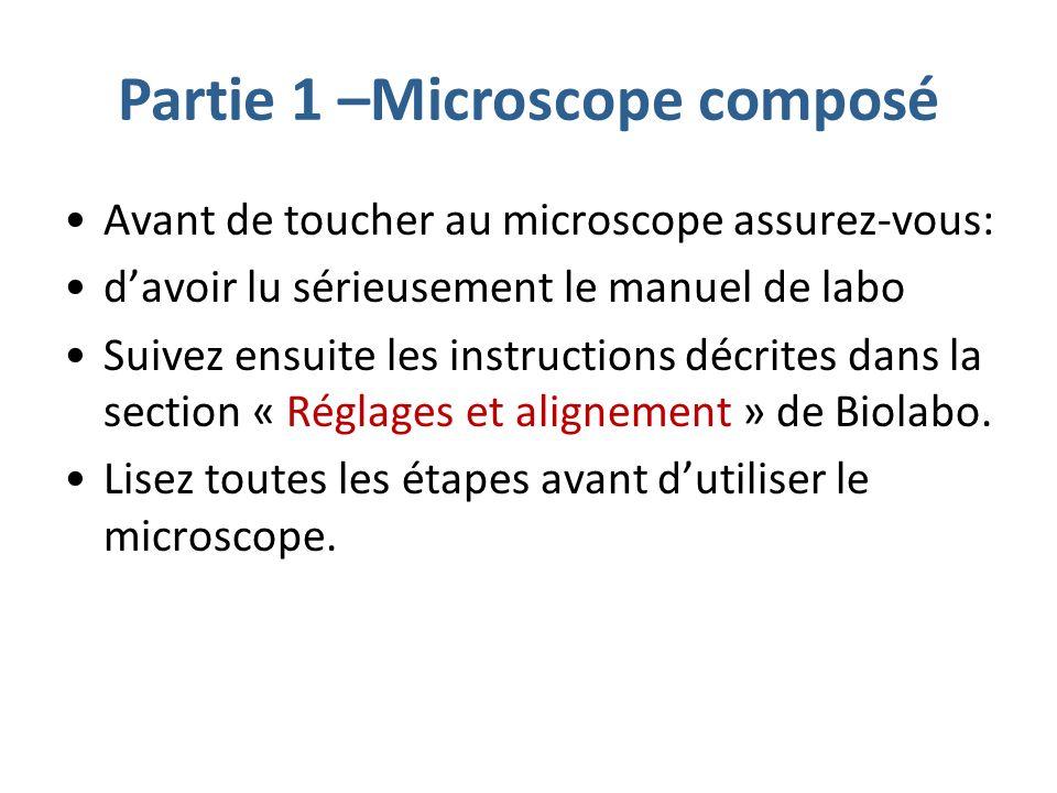 Partie 1 –Microscope composé Avant de toucher au microscope assurez-vous: davoir lu sérieusement le manuel de labo Suivez ensuite les instructions décrites dans la section « Réglages et alignement » de Biolabo.