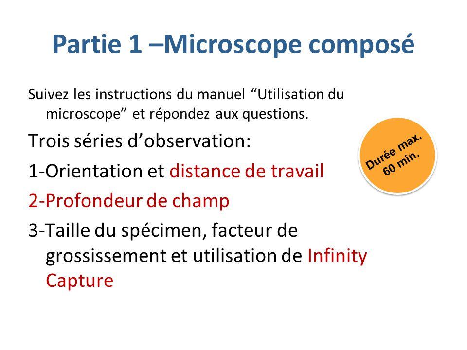 Partie 1 –Microscope composé Suivez les instructions du manuel Utilisation du microscope et répondez aux questions.