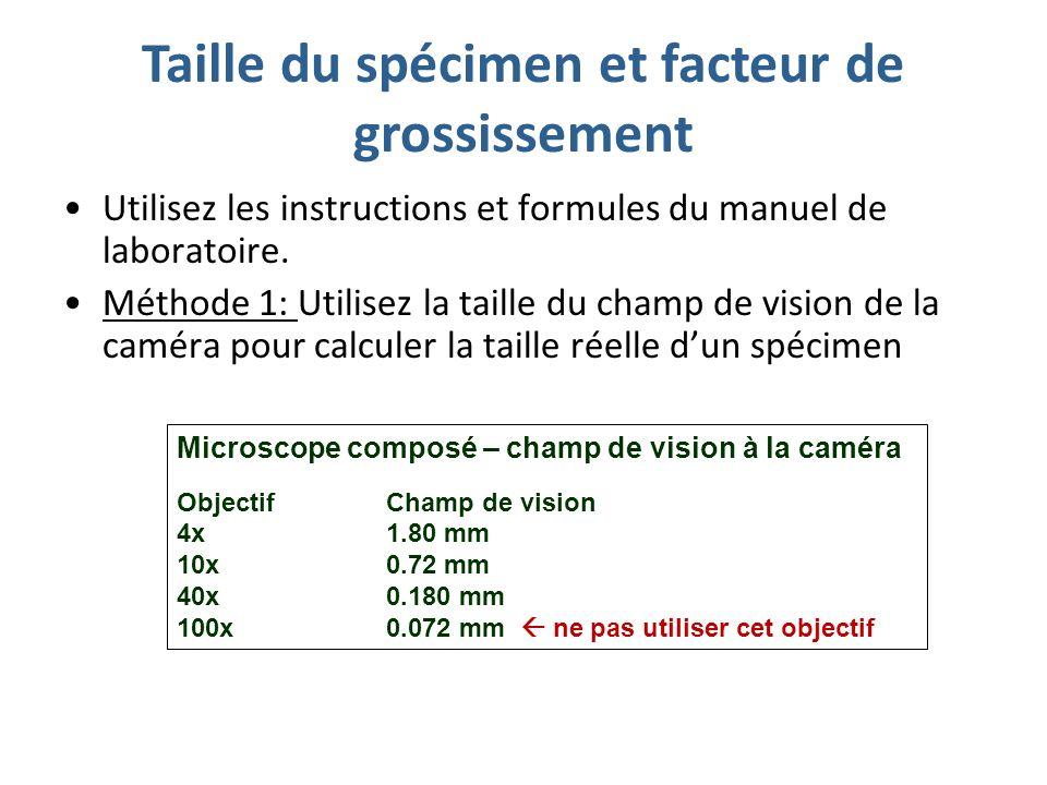 Taille du spécimen et facteur de grossissement Utilisez les instructions et formules du manuel de laboratoire.