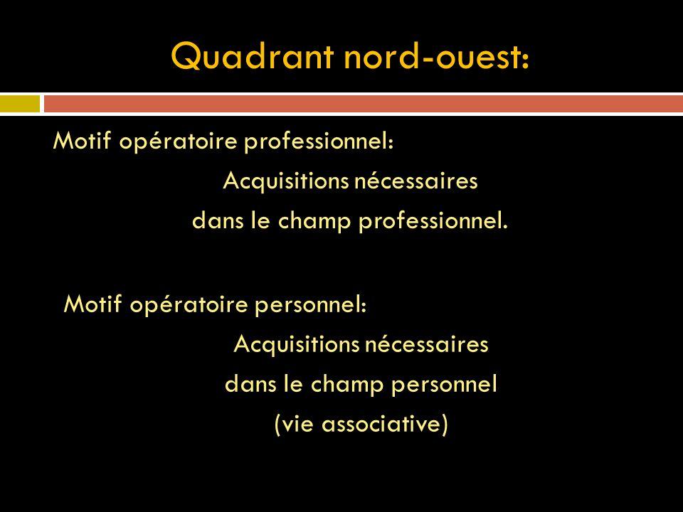 Quadrant nord-ouest: Motif opératoire professionnel: Acquisitions nécessaires dans le champ professionnel. Motif opératoire personnel: Acquisitions né