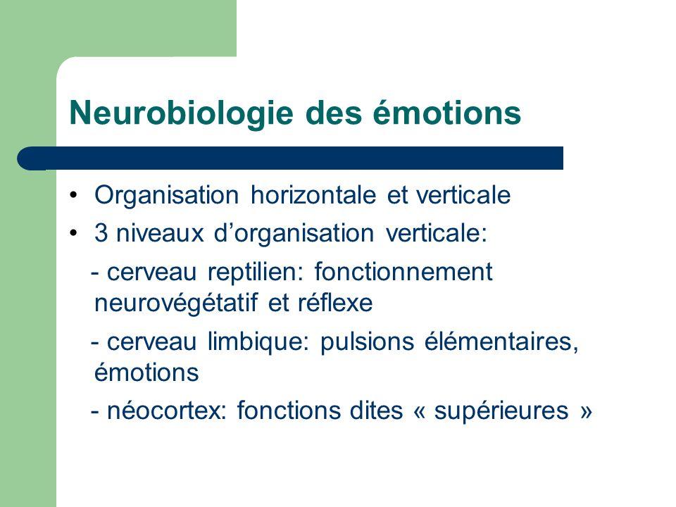 Neurobiologie des émotions Organisation horizontale et verticale 3 niveaux dorganisation verticale: - cerveau reptilien: fonctionnement neurovégétatif