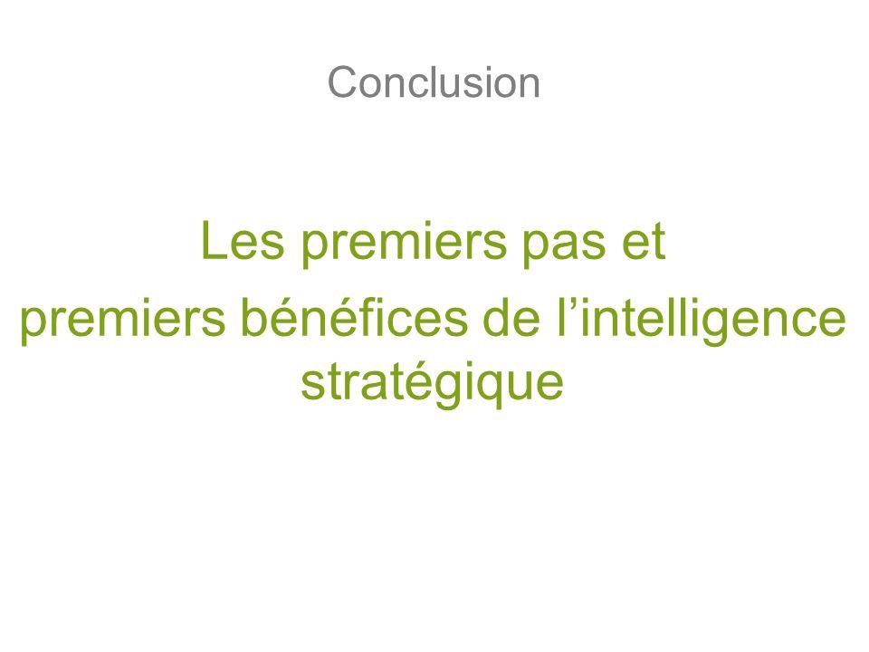 Conclusion Les premiers pas et premiers bénéfices de lintelligence stratégique