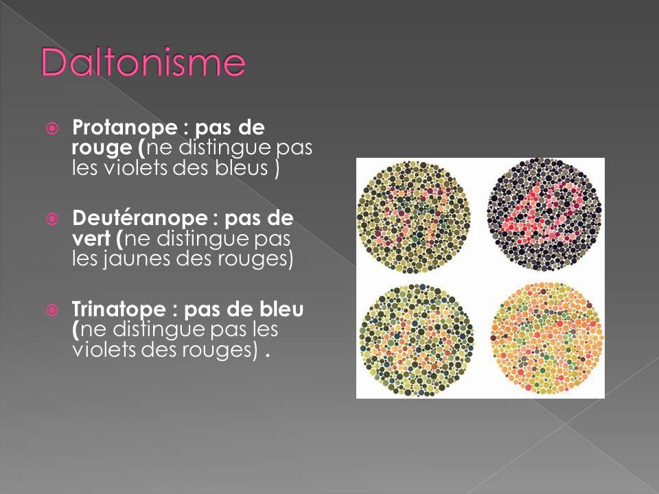 Détails et couleurs en pleine lumière Trois types : vert, bleu, rouge Achromatopsie totale : insuffisance des 3 types Daltonisme: achromatopsie partie