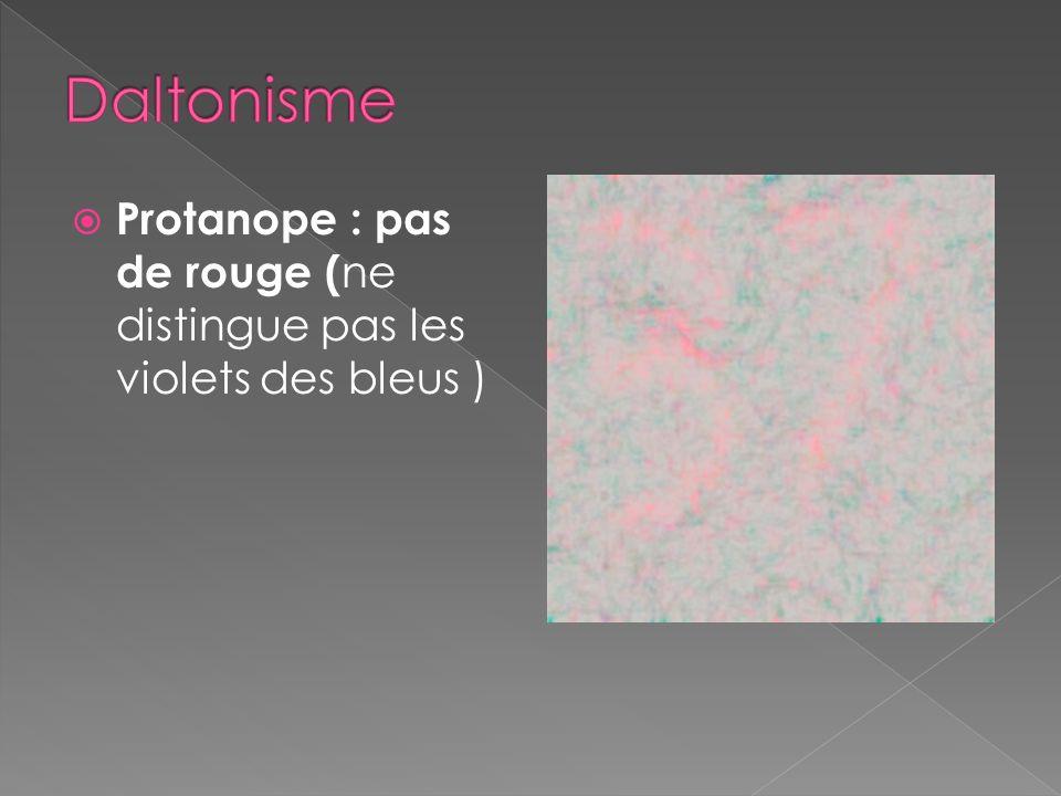 Protanope : pas de rouge ( ne distingue pas les violets des bleus ) Deutéranope : pas de vert ( ne distingue pas les jaunes des rouges) Trinatope : pa