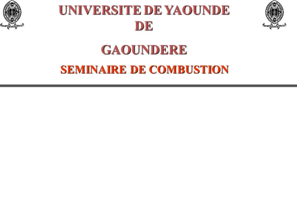 UNIVERSITE DE YAOUNDE DE GAOUNDERE SEMINAIRE DE COMBUSTION