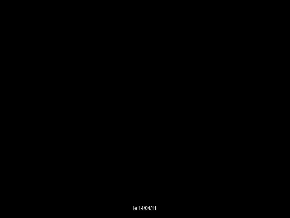 CONCLUSION Tous ces mécanismes permettent au malade de sauvegarder son homéostasie face à la maladie Respecter les mécanismes de défense (adaptés) du malade Plus la défense est massive, plus il faut laborder avec tact et patience Garder la position d évaluation de la qualité des mécanismes de défense Repérer des réactions qui pourraient être un obstacle a l accès ou le maintien des soins