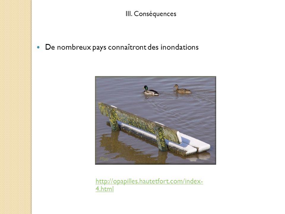 De nombreux pays connaîtront des inondations http://opapilles.hautetfort.com/index- 4.html III. Conséquences