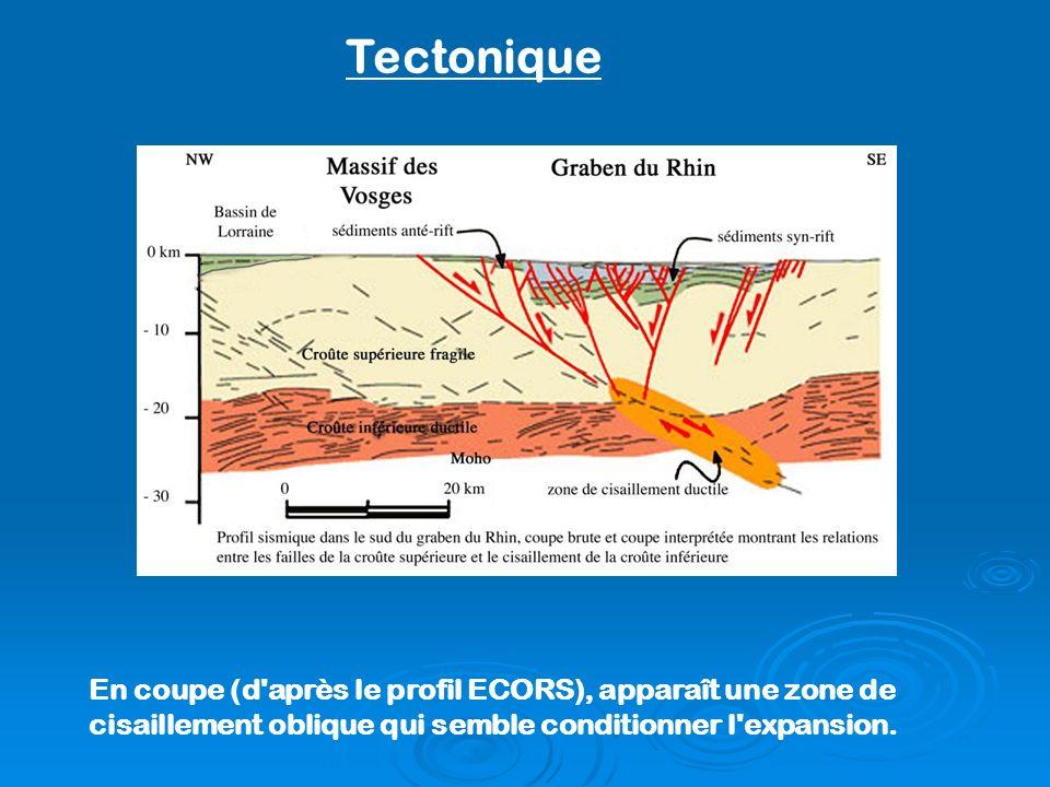 En coupe (d'après le profil ECORS), apparaît une zone de cisaillement oblique qui semble conditionner l'expansion. Tectonique