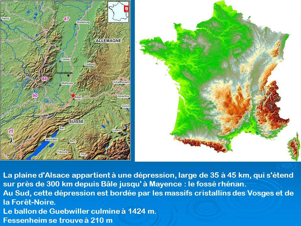 La plaine d'Alsace appartient à une dépression, large de 35 à 45 km, qui s'étend sur près de 300 km depuis Bâle jusqu' à Mayence : le fossé rhénan. Au