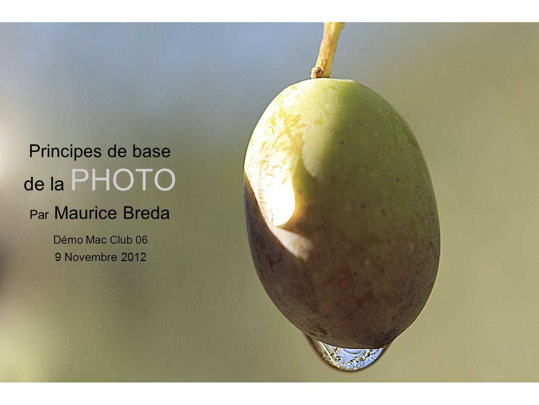 La photographie La Focale : La notion de focale se résume souvent à la notion de grossissement de limage.