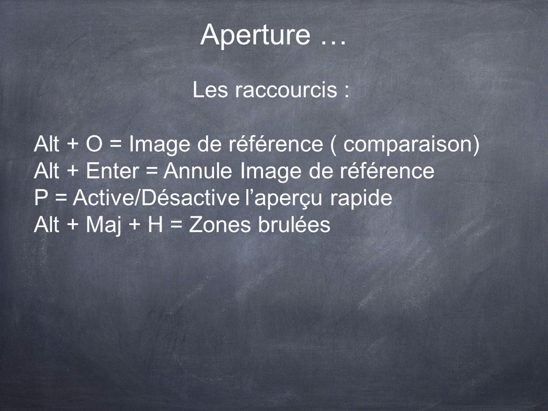 Aperture … Les raccourcis : Alt + O = Image de référence ( comparaison) Alt + Enter = Annule Image de référence P = Active/Désactive laperçu rapide Al