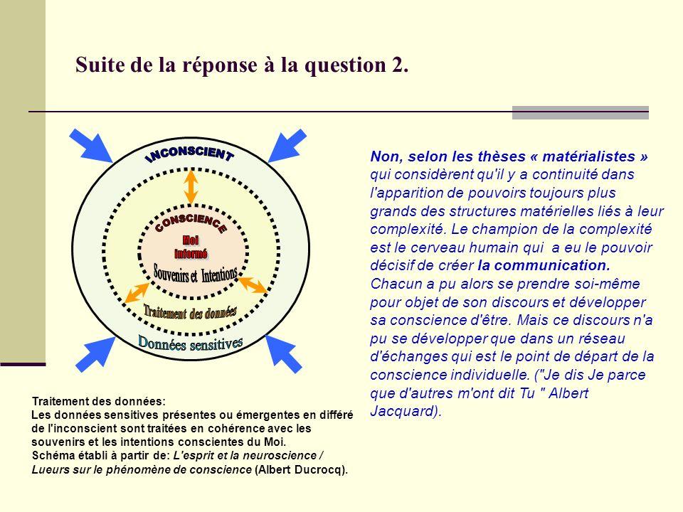 Q3: La conscience procède-t-elle du langage ou est-ce plutôt l inverse.