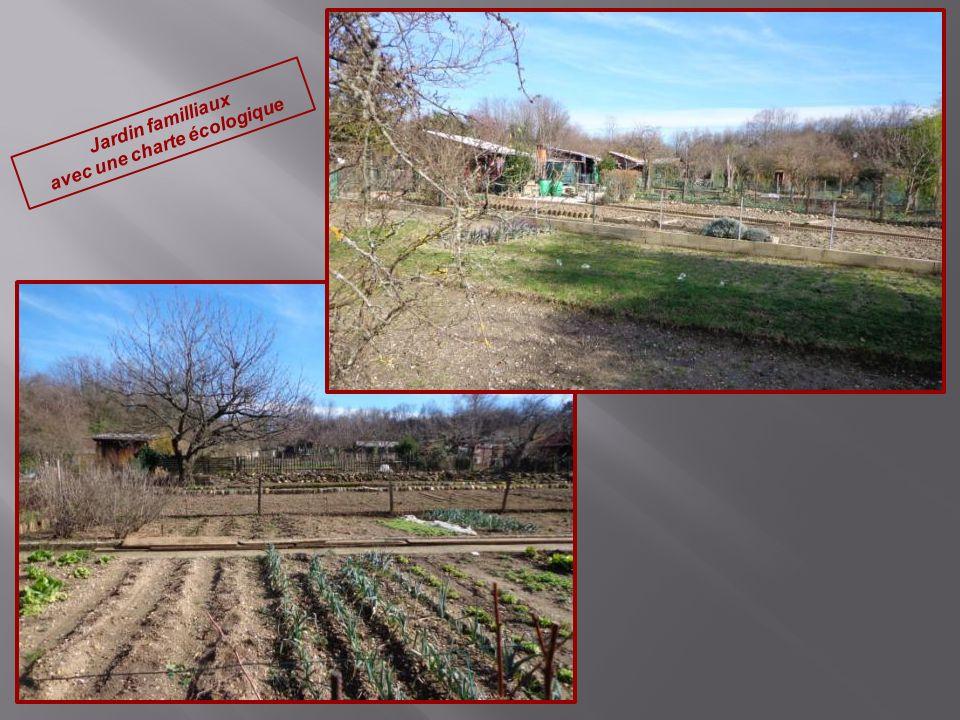 Jardin familliaux avec une charte écologique