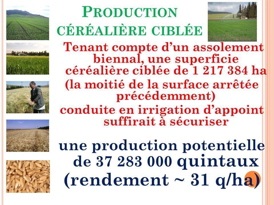 P RODUCTION CÉRÉALIÈRE CIBLÉE Tenant compte dun assolement biennal, une superficie céréalière ciblée de 1 217 384 ha (la moitié de la surface arrêtée précédemment) conduite en irrigation dappoint suffirait à sécuriser une production potentielle de 37 283 000 quintaux (rendement ~ 31 q/ha)