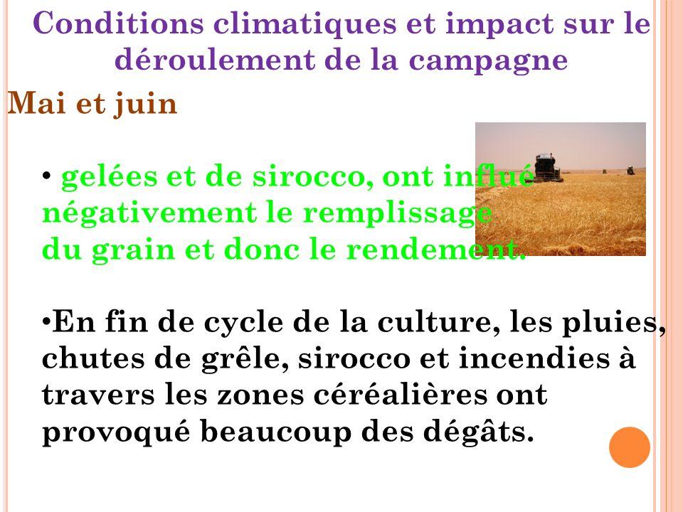 Conditions climatiques et impact sur le déroulement de la campagne Mai et juin gelées et de sirocco, ont influé négativement le remplissage du grain et donc le rendement.