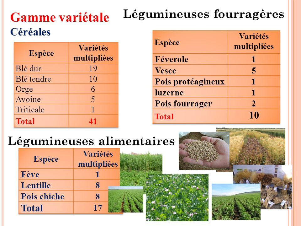 Gamme variétale Céréales Légumineuses alimentaires Légumineuses fourragères