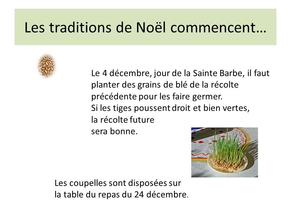 Les traditions de Noël commencent… Le 4 décembre, jour de la Sainte Barbe, il faut planter des grains de blé de la récolte précédente pour les faire germer.
