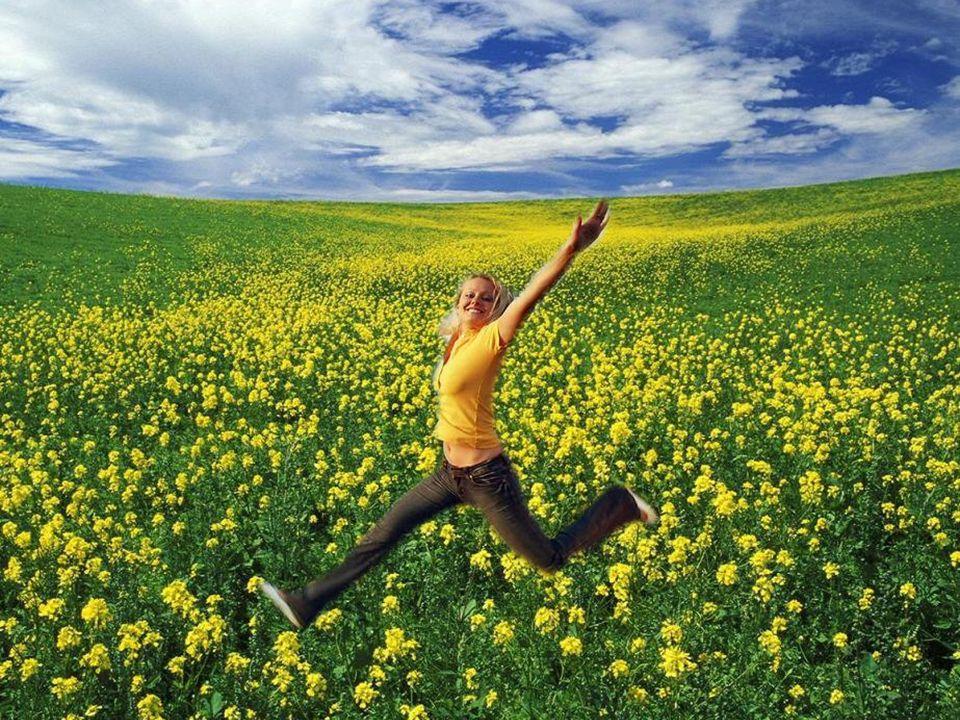 Je voudrais me cacher dans ce champ de fleurs… Jouer à cache cache comme un enfant insouciant… Comme ce serait merveilleux tout simplement de retrouve