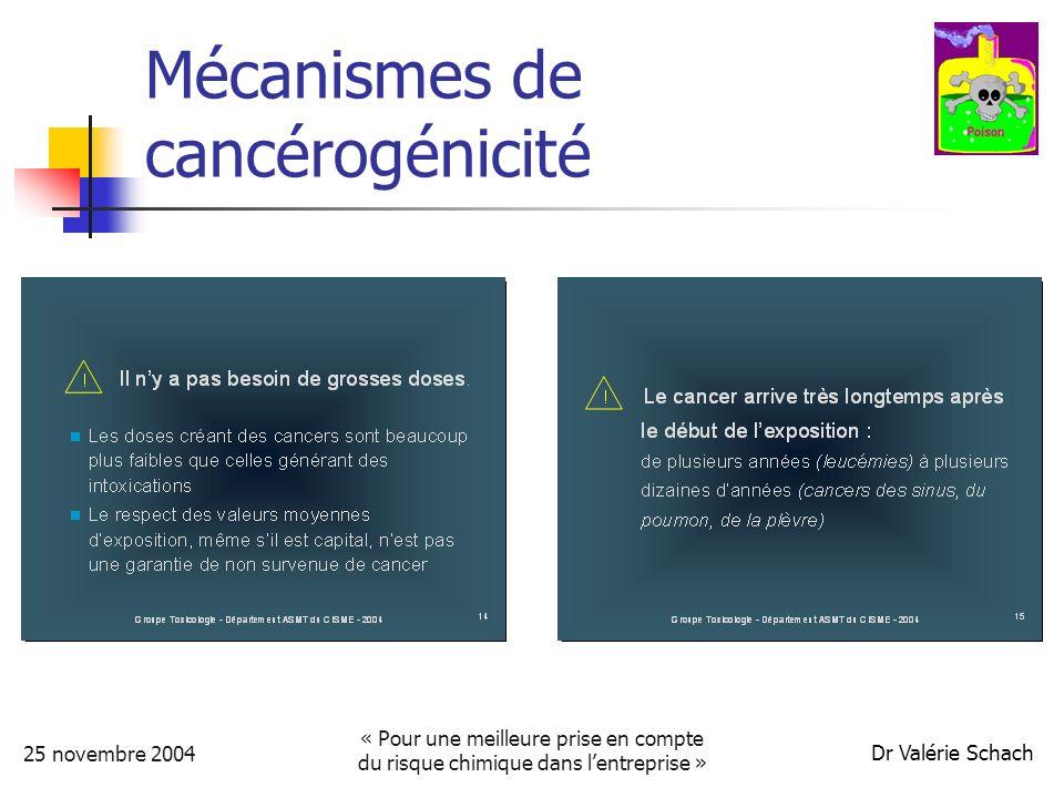 25 novembre 2004 « Pour une meilleure prise en compte du risque chimique dans lentreprise » Dr Valérie Schach Les co-expositions