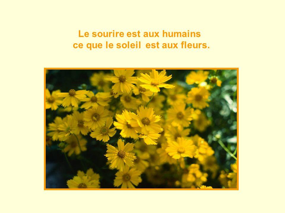 Le sourire est aux humains ce que le soleil est aux fleurs.