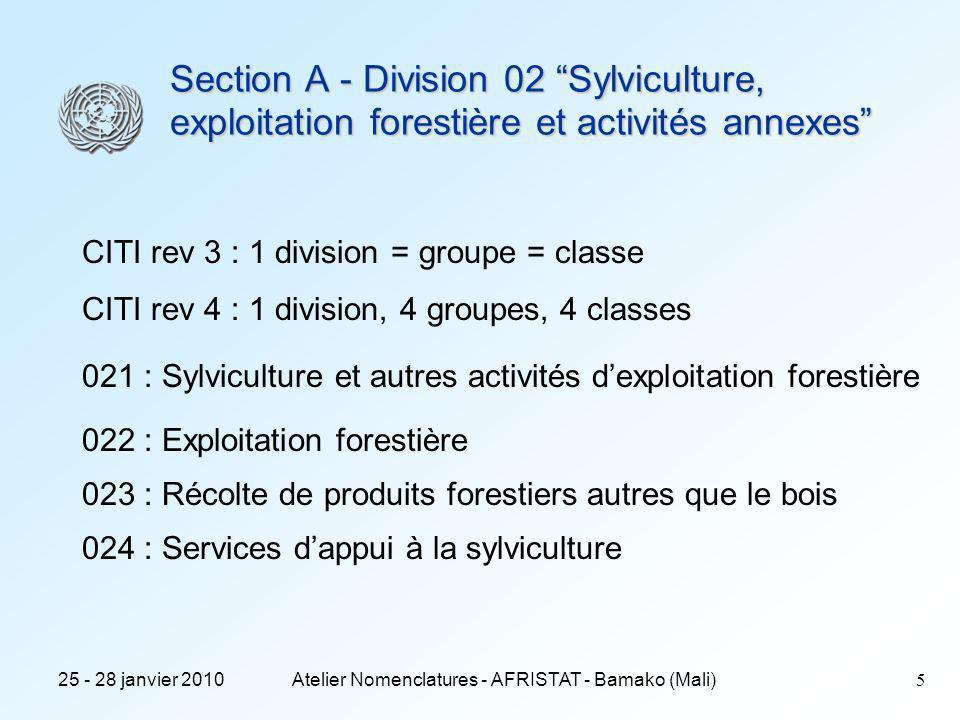 25 - 28 janvier 2010Atelier Nomenclatures - AFRISTAT - Bamako (Mali)5 Section A - Division 02 Sylviculture, exploitation forestière et activités annexes CITI rev 3 : 1 division = groupe = classe CITI rev 4 : 1 division, 4 groupes, 4 classes 021 : Sylviculture et autres activités dexploitation forestière 022 : Exploitation forestière 023 : Récolte de produits forestiers autres que le bois 024 : Services dappui à la sylviculture