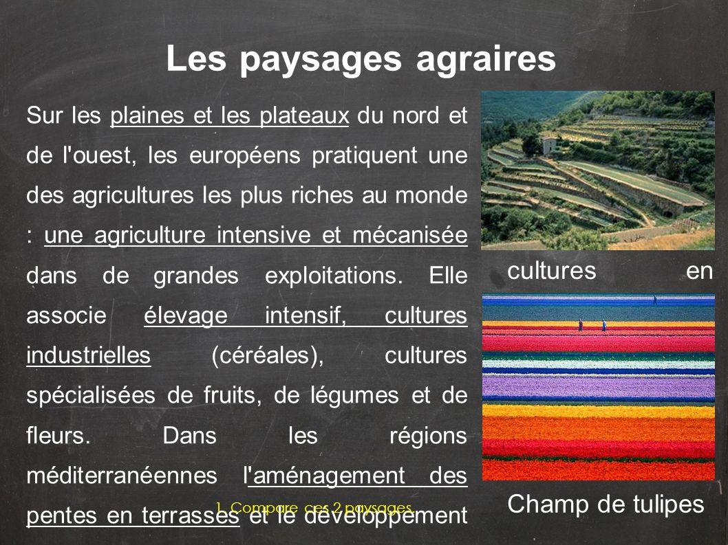 Sur les plaines et les plateaux du nord et de l'ouest, les européens pratiquent une des agricultures les plus riches au monde : une agriculture intens