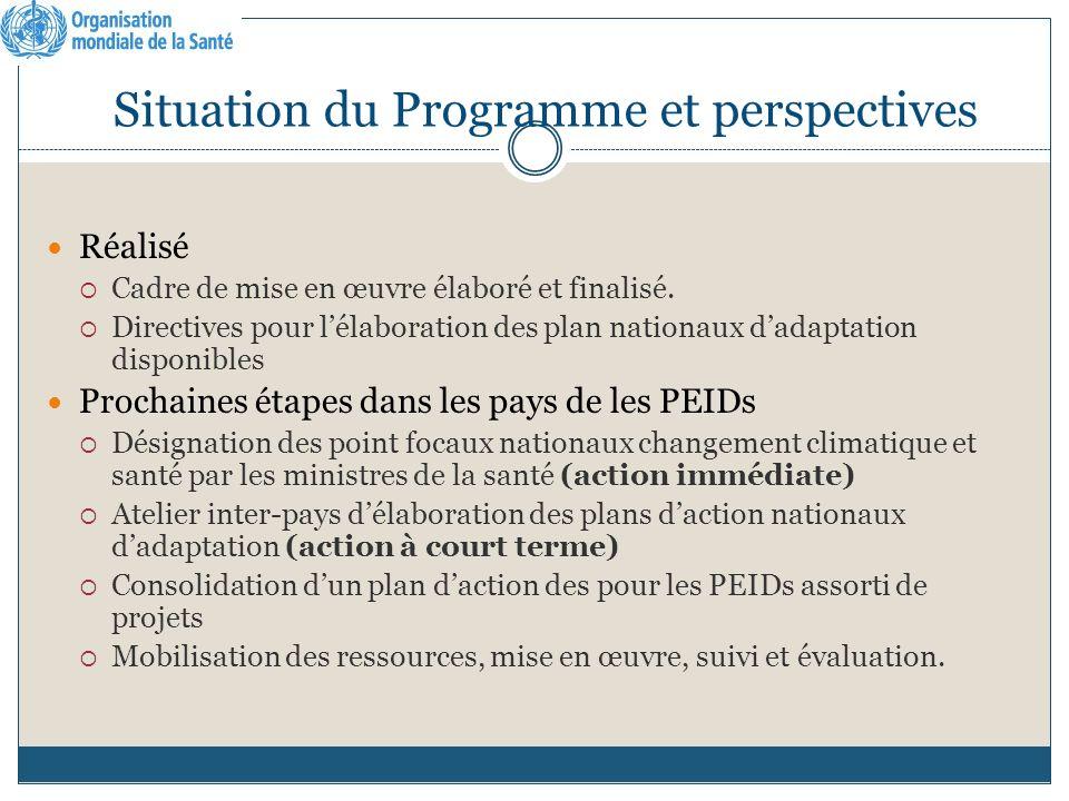 Situation du Programme et perspectives Réalisé Cadre de mise en œuvre élaboré et finalisé.