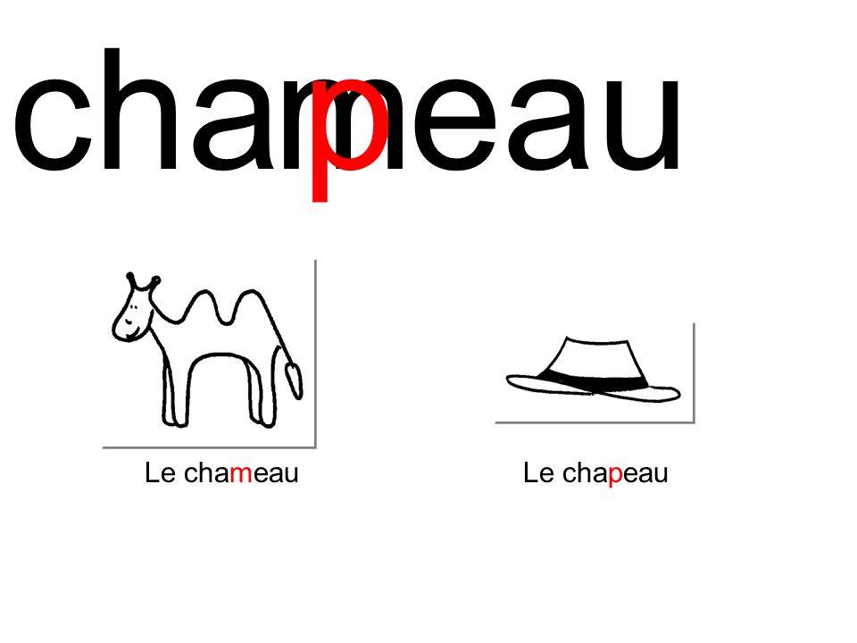 chaeaum Le chameau p Le chapeau