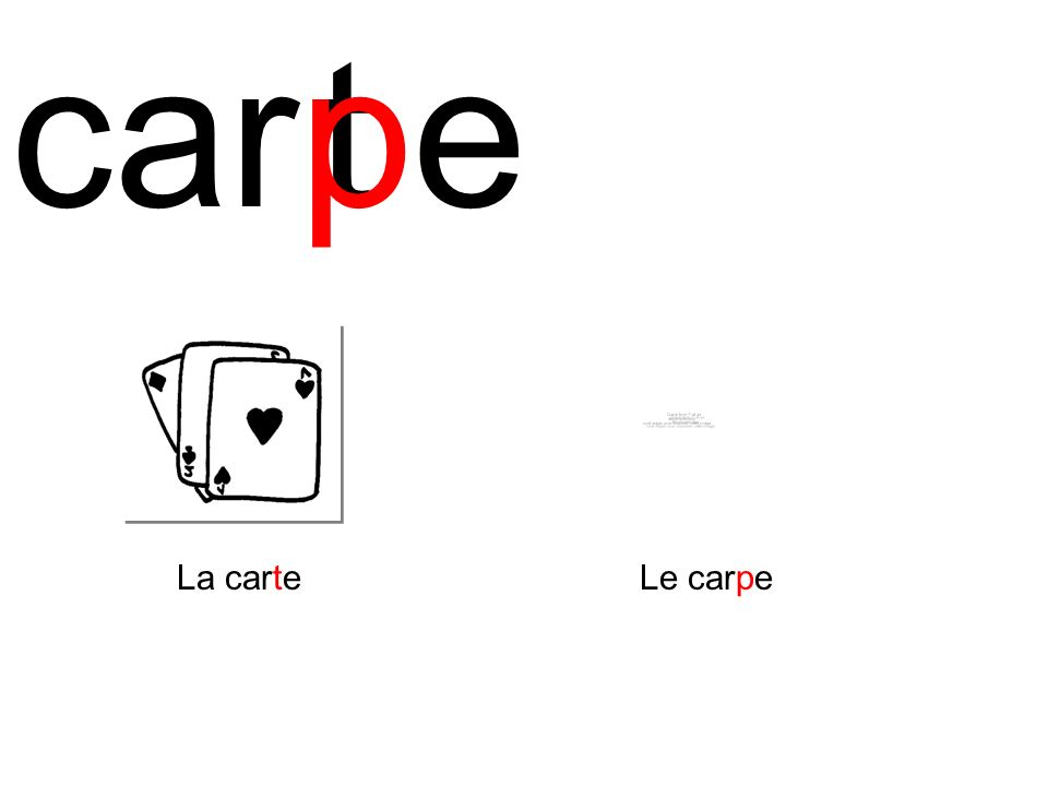 caret La carte p Le carpe