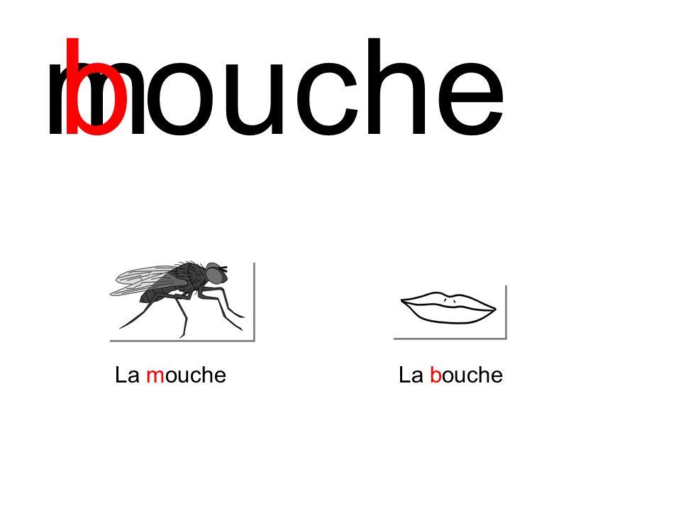 moucheb La moucheLa bouche