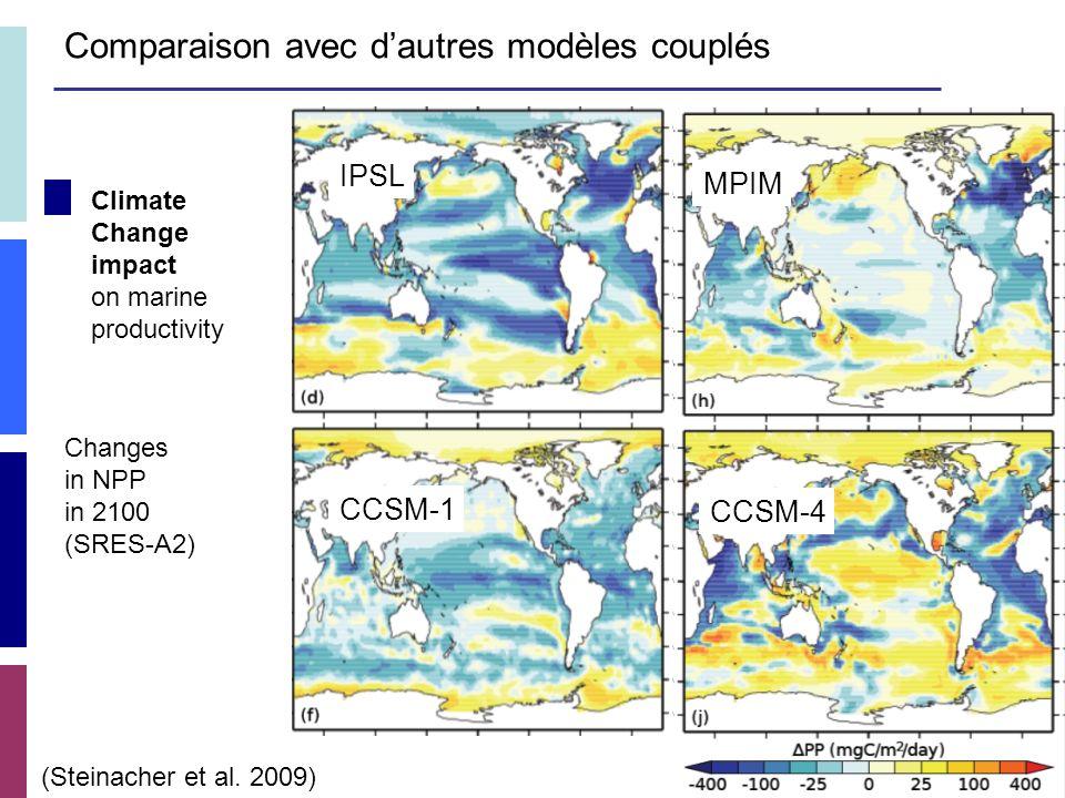 Climate Change impact on marine productivity (Steinacher et al.