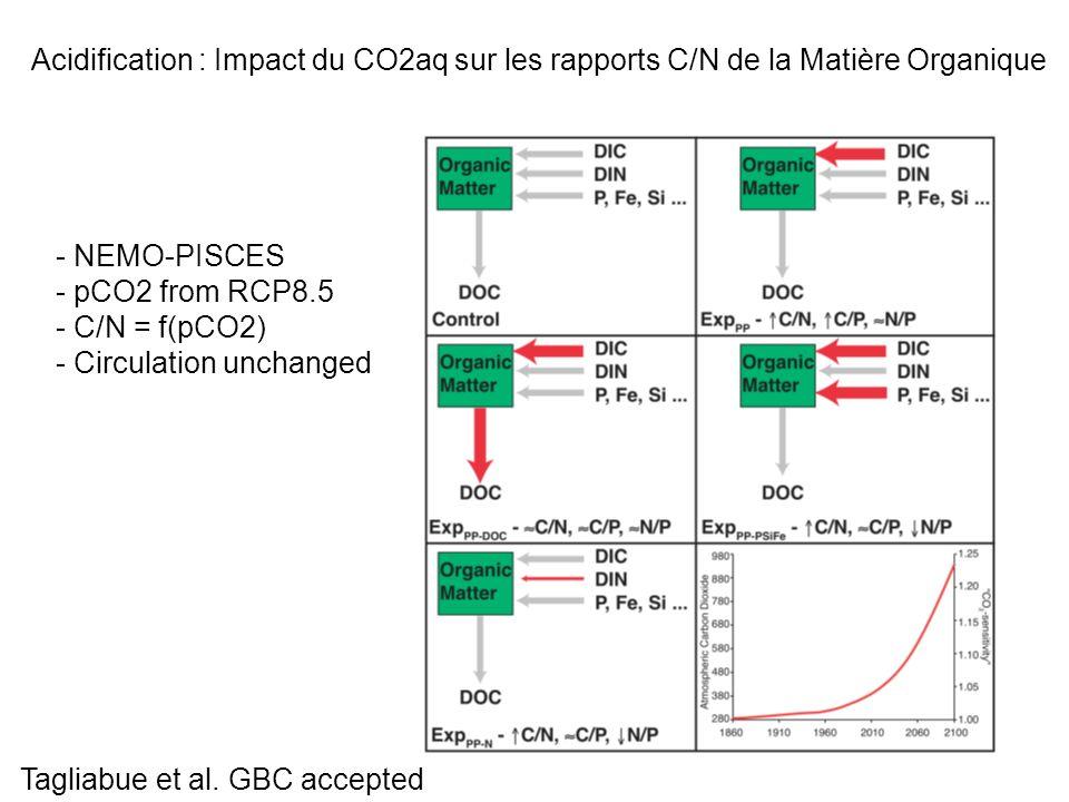 Acidification : Impact du CO2aq sur les rapports C/N de la Matière Organique - NEMO-PISCES - pCO2 from RCP8.5 - C/N = f(pCO2) - Circulation unchanged Tagliabue et al.