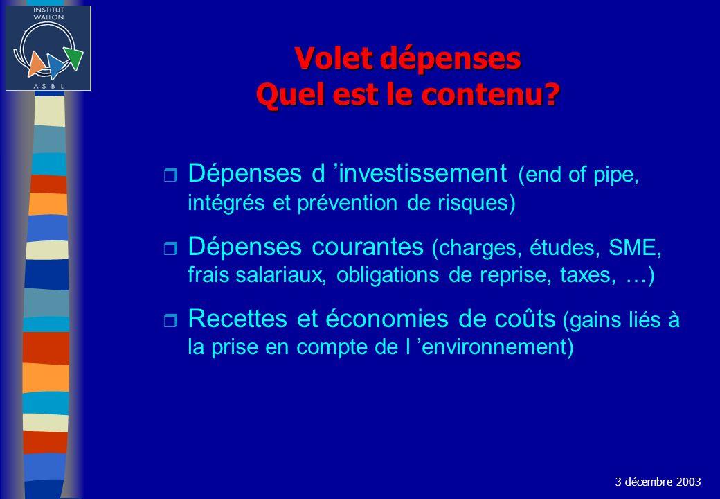 Volet dépenses Quel est le contenu? r Dépenses d investissement (end of pipe, intégrés et prévention de risques) r Dépenses courantes (charges, études