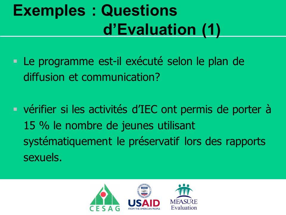 Séminaire Suivi / Evaluation des programmes de santé Dakar, Sénégal, 18 juin au 6 juillet 2007 Exemples : Questions dEvaluation (1) Le programme est-i