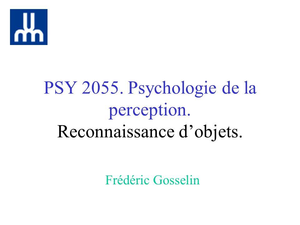 PSY 2055. Psychologie de la perception. Reconnaissance dobjets. Frédéric Gosselin