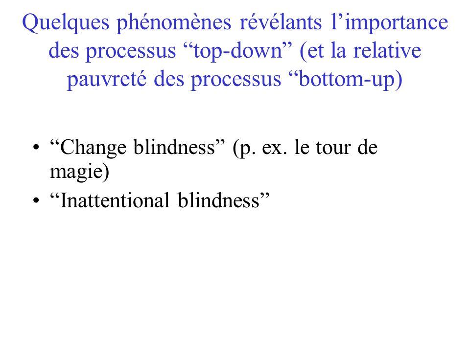 Quelques phénomènes révélants limportance des processus top-down (et la relative pauvreté des processus bottom-up) Change blindness (p. ex. le tour de
