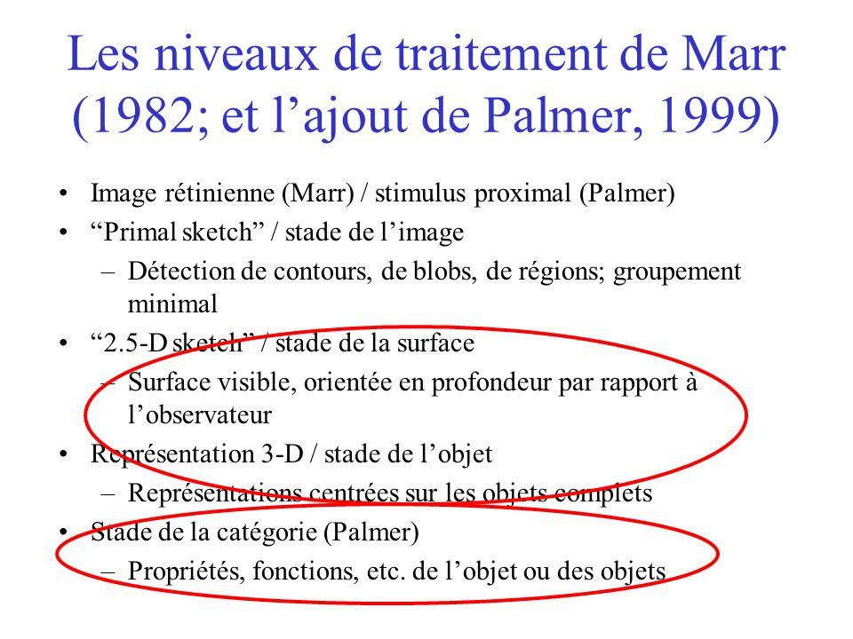Les niveaux de traitement de Marr (1982; et lajout de Palmer, 1999) Image rétinienne (Marr) / stimulus proximal (Palmer) Primal sketch / stade de lima