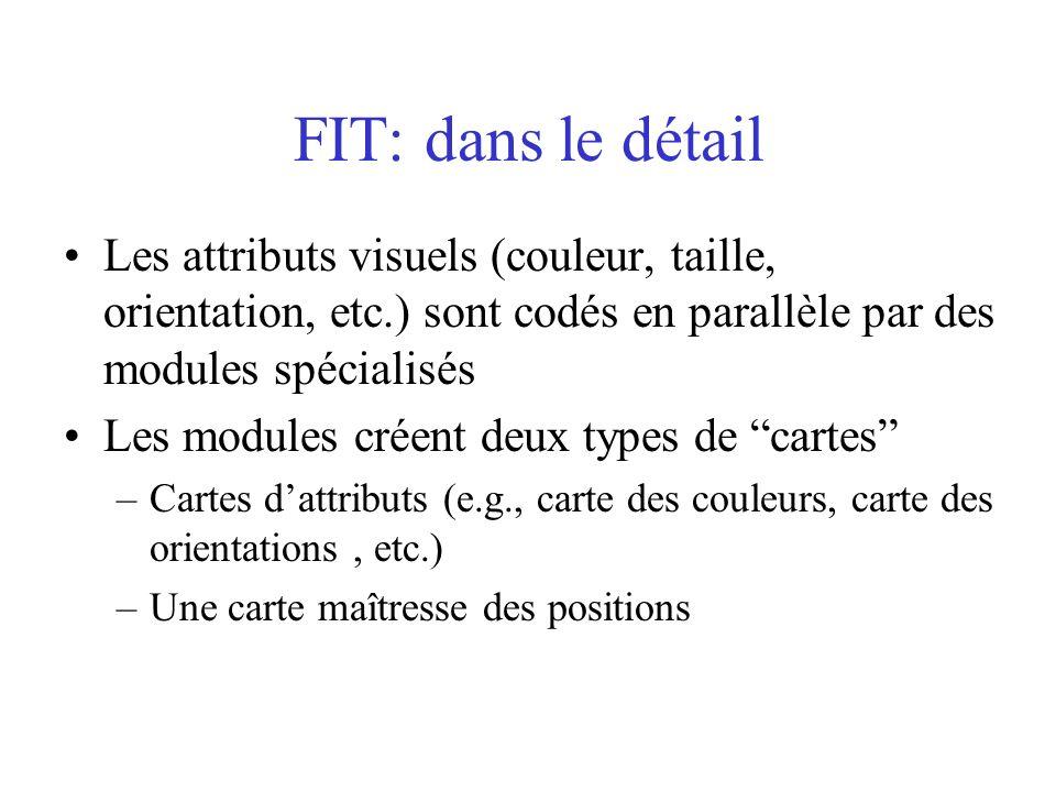 FIT: dans le détail Les attributs visuels (couleur, taille, orientation, etc.) sont codés en parallèle par des modules spécialisés Les modules créent