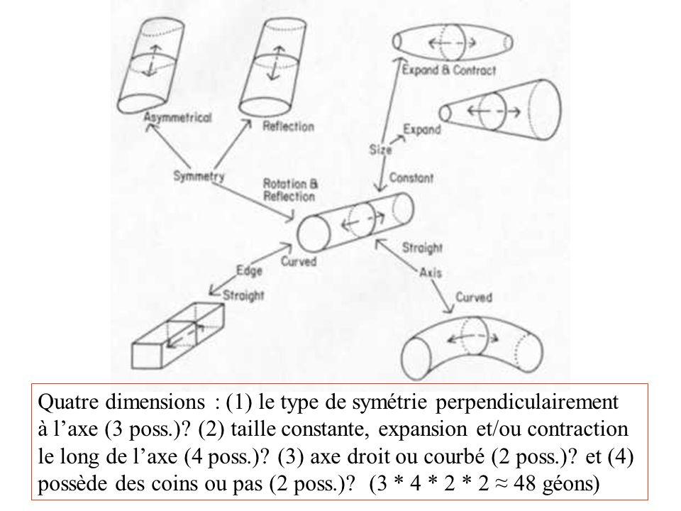 Quatre dimensions : (1) le type de symétrie perpendiculairement à laxe (3 poss.)? (2) taille constante, expansion et/ou contraction le long de laxe (4