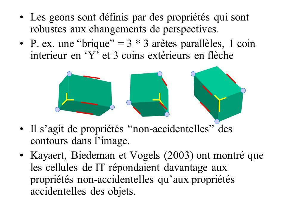 Les geons sont définis par des propriétés qui sont robustes aux changements de perspectives. P. ex. une brique = 3 * 3 arêtes parallèles, 1 coin inter