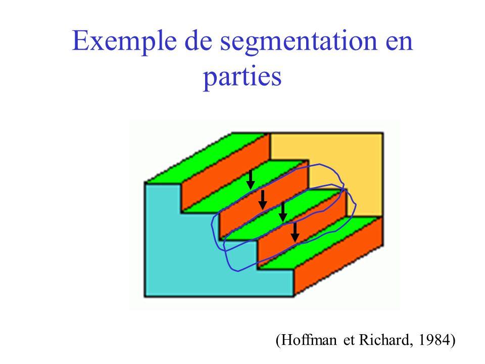 Exemple de segmentation en parties (Hoffman et Richard, 1984)